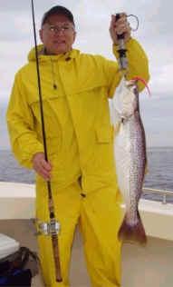 bkd-trout.jpg