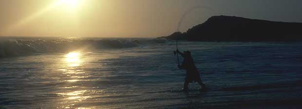 g.loomis-imx-surf-rods-header.jpeg